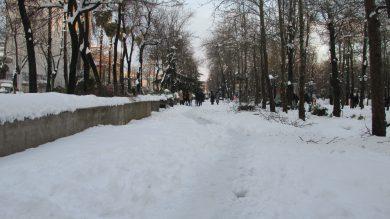 گزارش تصویری برف ۲۲بهمن ۹۸ در رشت